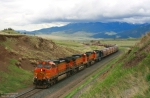 BNSF 5103 rounds the curve approaching O'Rea Creek Road